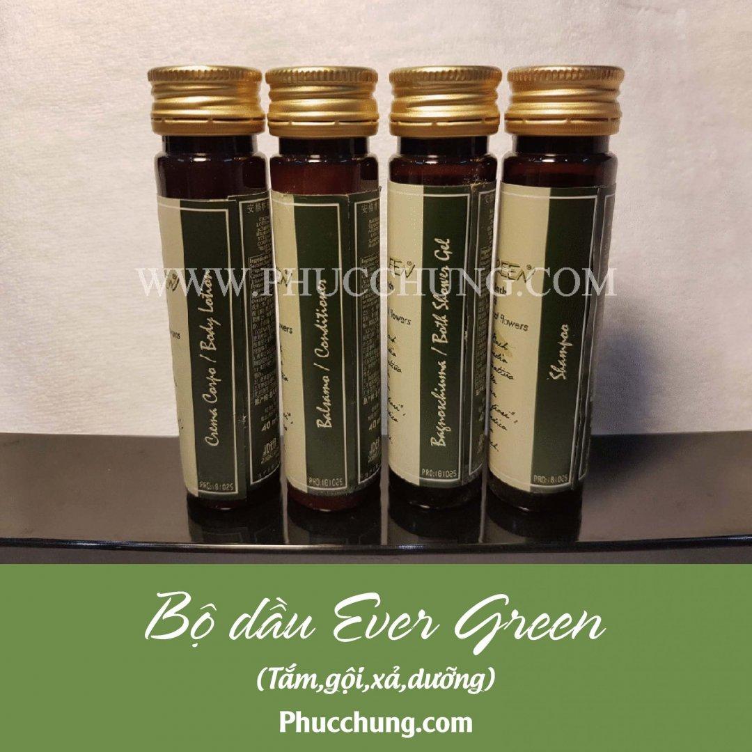 Bộ dầu Ever Green (tắm,gội,xả,dưỡng)